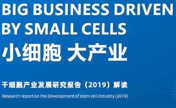 干细胞产业发展研究报告